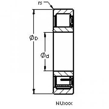 المحامل NU1980 EM AST