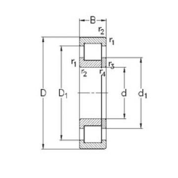 المحامل NUP2305-E-TVP3 NKE