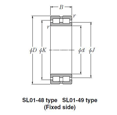 Bearing SL02-4852