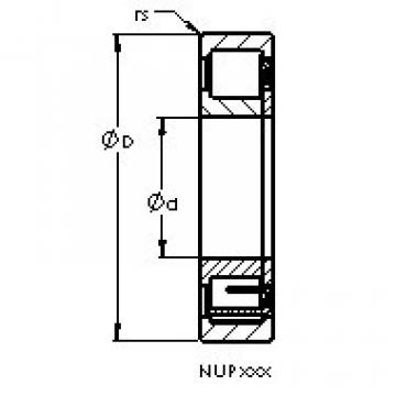 المحامل NUP2309 EM AST
