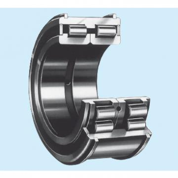 Bearing RS-49/530E4